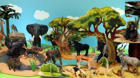 小动物们来到生态园舒适的生活