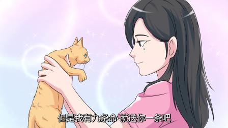 美女救了一只小猫,伤好后小猫用这种方式报恩,太不可思议了!