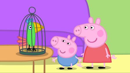 猪奶奶把鹦鹉波莉带到佩奇家,乔治非常喜欢