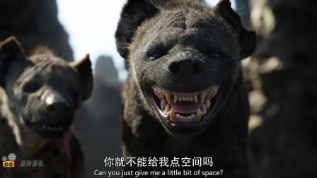 小狮王不听劝,一起被鬣狗团团围住