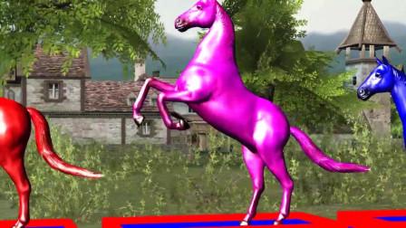趣味益智动画片 彩色马坐火车穿过森林