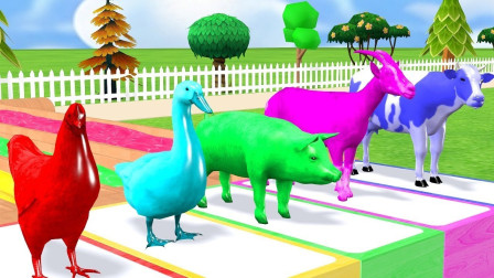 亲子早教动画鹅羊过彩虹河身体染色学颜色