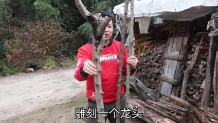 秦岭山里这种树,烧柴都没人要,木哥在网上卖几百一条,怎么做到