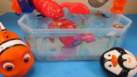 玩玩具认识彩色海洋生物