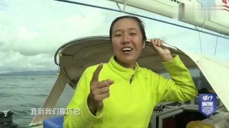 侣行夫妇:在海上偶遇胖海豹,一经挑逗,海豹被逼得纵身跳海!