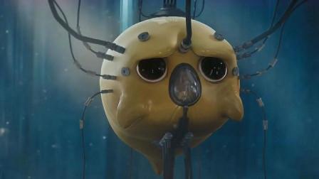 蛋黄人:李致远把蛋黄当朋友,在蛋黄眼里,李致远却只是载体而已