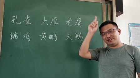 网红老师教孩子们识字记词方法真棒,当年我语文老师要这么教就好了!
