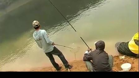 钓友寻钓高山湖,没想碰上好鱼情擒获大草鱼和大胖头