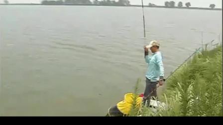 钓鱼大师不愧是大师级,战水库钓获草鱼后又打起连杆鲤鱼来