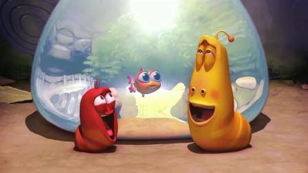 爆笑虫子-两虫子养小鱼,没想到漏水了,大红拿生命在抢救啊