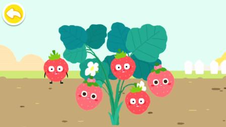 宝宝巴士趣味小游戏 原来草莓是这样长大的
