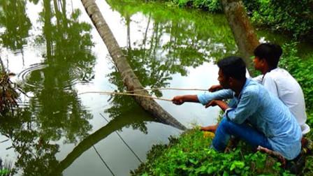 无人喂养的鱼塘,农村小哥俩试着抛几竿,看看他们钓到了啥鱼?