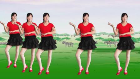 动感活力健身舞《菊花满山爆》简单易学大众化,好看好学附分解!