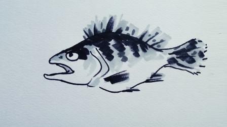 画鱼1窦老师教画画