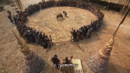 奴隶被扔进斗兽场,族人们以为他必死无疑,下秒却出现惊天反转!