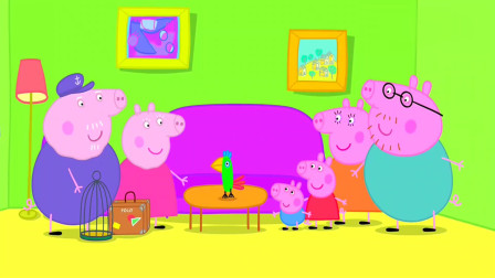 小猪佩奇:鹦鹉波莉学佩奇讲话,逗得大家非常高兴!