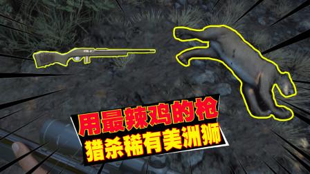 饺子:满足粉丝的要求 用荒野召唤最辣鸡的枪打美洲狮 我太难了!