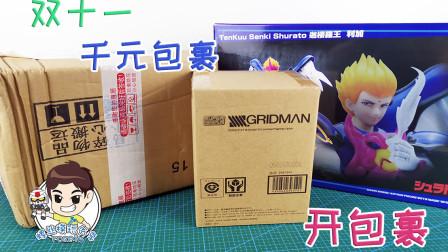 【螺丝模玩分享-开包裹】双十一千元战果!勒紧裤腰带过节!
