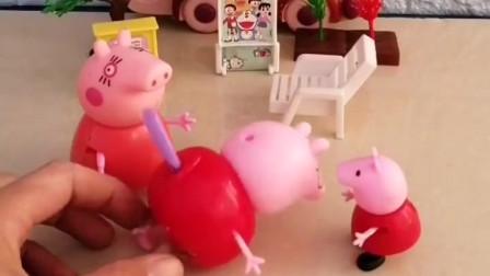 猪爸爸屁股上扎了根刺,猪妈妈帮他消毒上药,猪妈妈真体贴