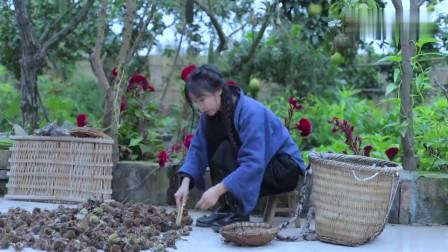 李子柒:秋天就是坚果的主场呀~板栗甜,橡果香!