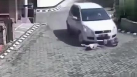 小女孩遭遇死神,司机吓坏了,可下一秒竟发生了奇迹