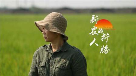 """看""""爱折腾""""的新农人,如何点亮家乡致富路!"""