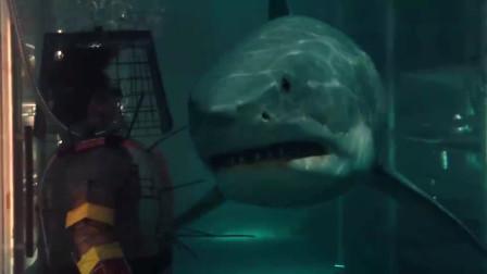 大海啸之鲨口逃生:男子全副武装引开鲨鱼,不料意外还是发生了