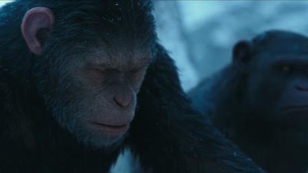 猩球崛起3:卢卡为救凯撒去,凯撒怒了,要让人类付出代价