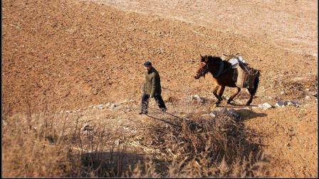 给六十岁以上的农民每月养老金提高到五百元,他们还会种粮吗?