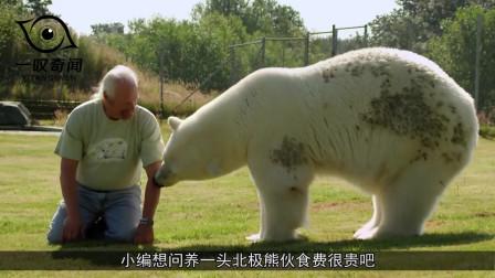 """老人养了一头""""宠物"""",16年间长了700斤,如今变成了这样"""