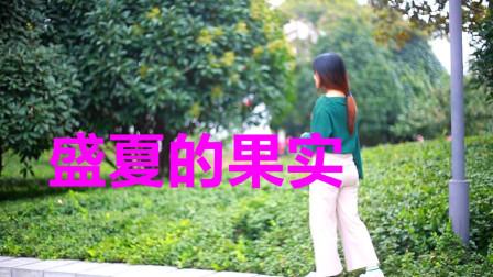 经典老歌:《盛夏的果实》旋律温柔多彩,曲中流露真情