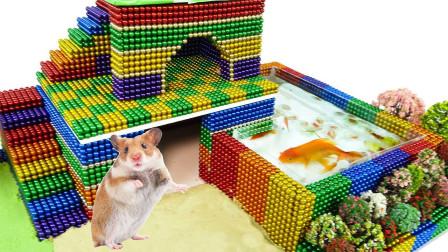 趣味DIY,达人用磁球建造鱼缸水族馆和仓鼠屋,仓鼠会掉水里吗?