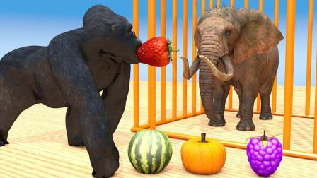 亲子早教动画大猩猩喂大象吃草莓学颜色