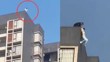 女子坐18层楼顶欲跳楼 下滑瞬间被一把拽住