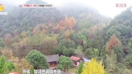 怀化溆浦山林层林尽染,如诗色调锁住冬日美景,游客直呼美呆了