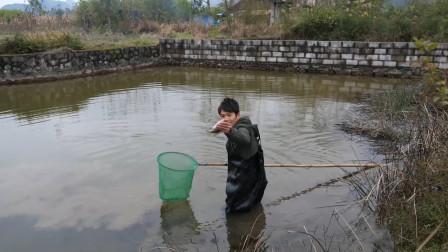 冬天水里的鱼不会动,小伙直接用渔网打捞,收获几条大家伙