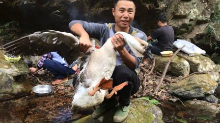 300元买一只15斤大鹅,一锅炖不下分三锅红烧,这味道真让人着迷