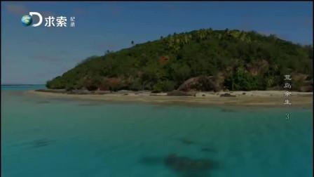 17挨饿德捡到一只超级大的椰子蟹,饱餐一顿,嘿嘿嘿!——荒岛篇