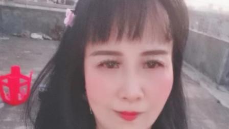 zhanghongaaa精选全民广场舞杯中酒五种健身舞蹈教学版原创