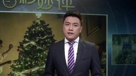 第一时间 辽宁卫视 2019 气候变化导致圣诞树价格创新高  比十年前翻倍