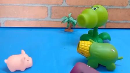 植物们要去打僵尸,小猪也要跟着去,植物们会带他去吗?