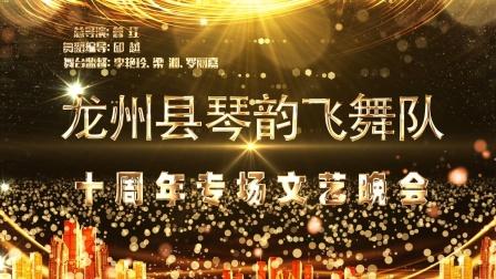 龙州县琴韵飞舞十周年专场晚会
