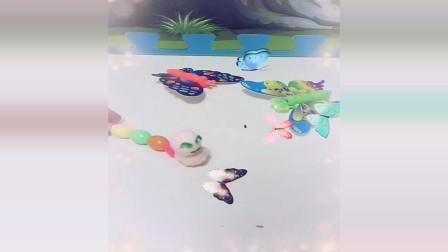 宝宝益智动画片:毛毛虫想和蝴蝶一起飞到南方去