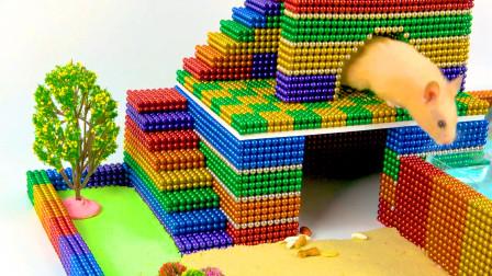 创意巴克球教程,如何用彩色巴克球、太空沙为小仓鼠建造双层宠物家园?