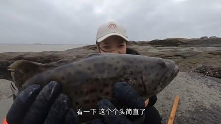 赶海小妹在海边寻水坑,意外抓到一条巨型石斑鱼,卖了600多块