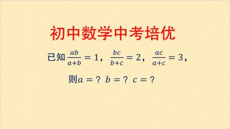 初中数学中考培优,解分式方程组,不会好方法算起来就太麻烦了