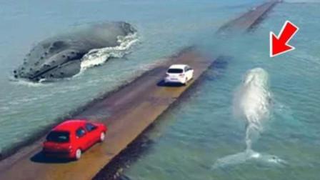 世上最危险的公路,没有时速限速,跑得慢会有生命危险!