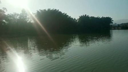 江西老表在广西上林碧桂园上班,竟然找到这块美丽的地方钓鱼散心
