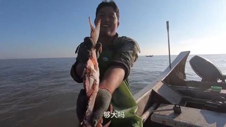 赶海大叔去外海撒网捕鱼,捕获了10斤海虾和几十斤水鼓鱼,卖了1000多