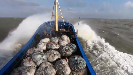 赶海大叔跟着老船长出海撒网捕鱼,捕获几百斤值钱货,卖了近5000块